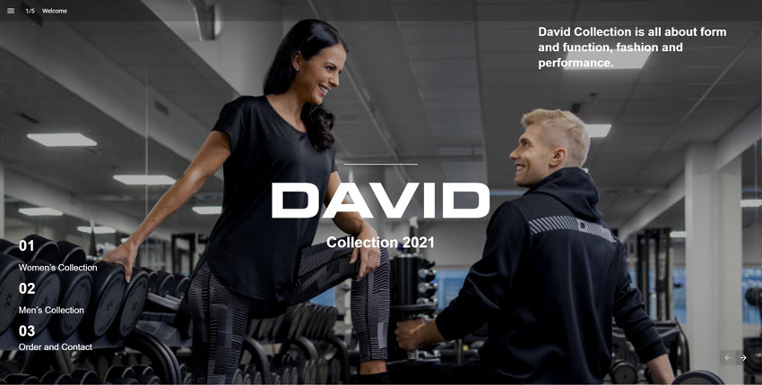 Introducing the David Collection 2021